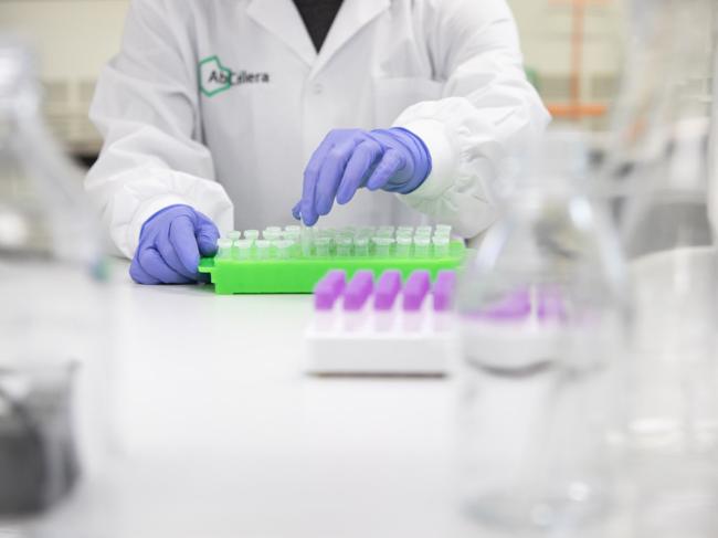 Abcellera scientist prepares reagents in lab