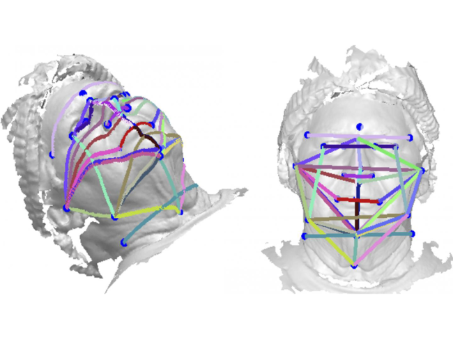 Points of measurement in 3D head scan