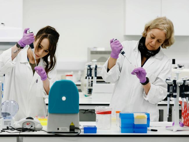 Women scientists in lab
