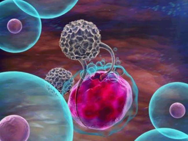 NK cell destroying a cancer cell