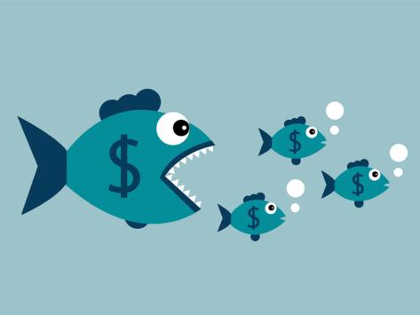 Acquisition fish