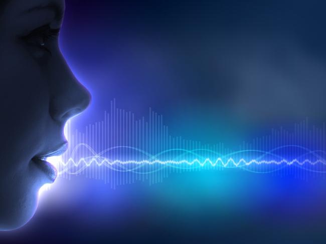 Vocal soundwave illustration
