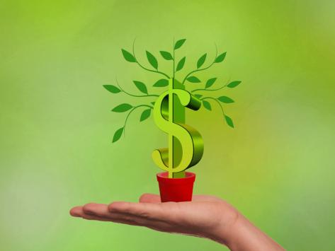 Newco-plant-dollar-sign