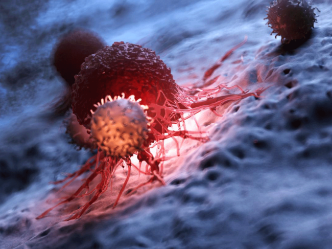 CAR T cell attacking cancer cells