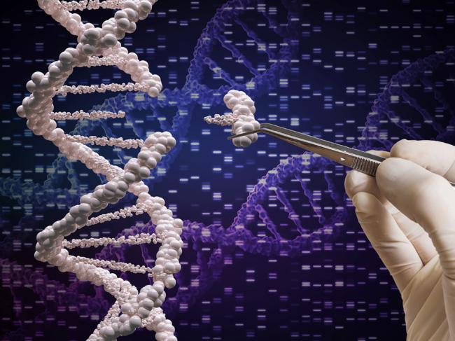 Gene editing illustration