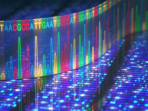 Dna ngs genome sequencing