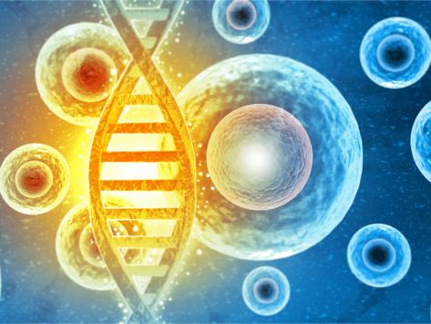 Cells, DNA illustration