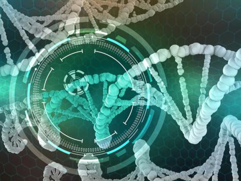 Genetic engineering dna rna