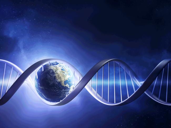 Globe in DNA helix