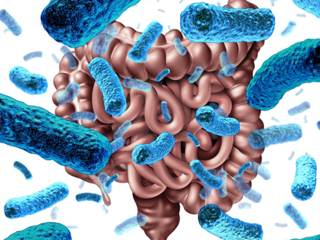 Microbiome-pic.png