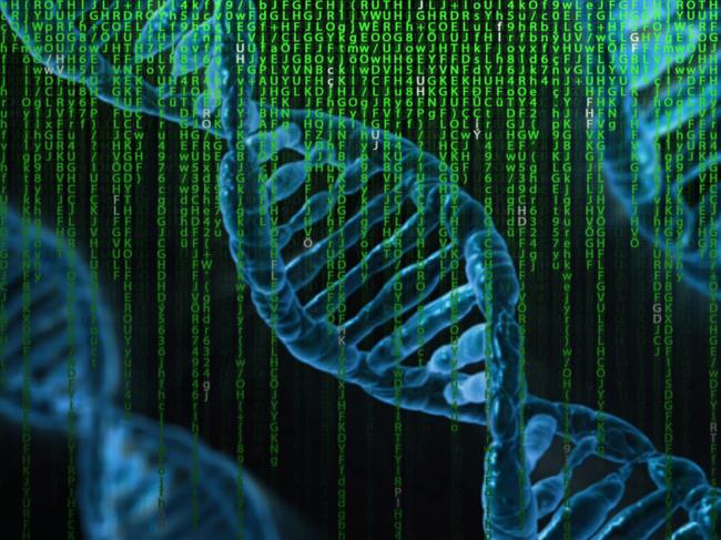 DNA and data illustration