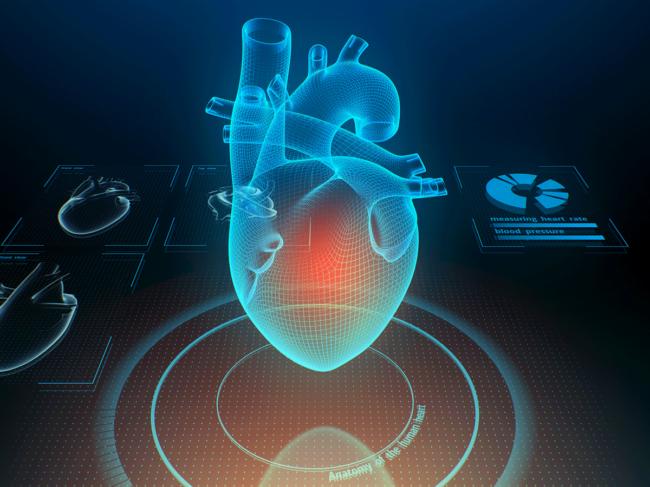 Digital heart illustration