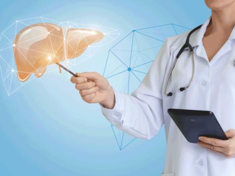 Liver doctor