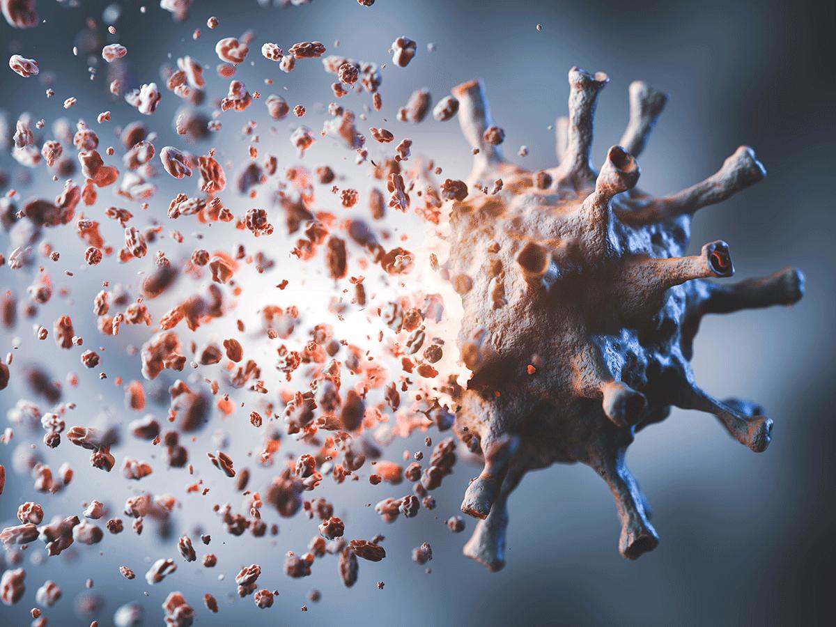 Disintegrating coronavirus