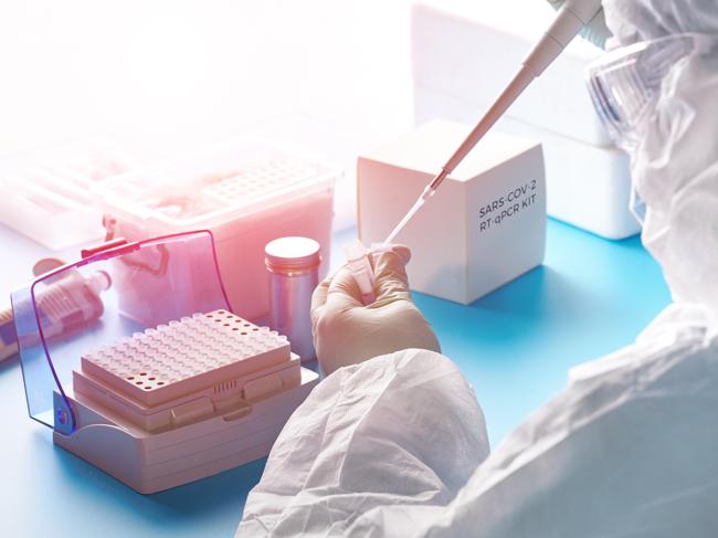 SARS-CoV-2 molecular diagnostic