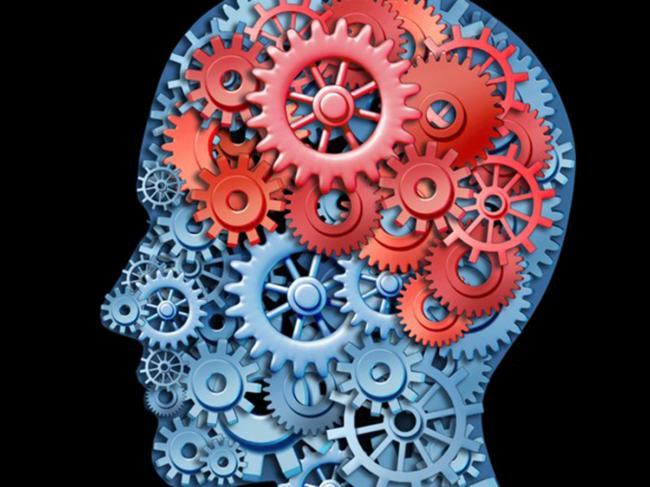 Brain-gears.png