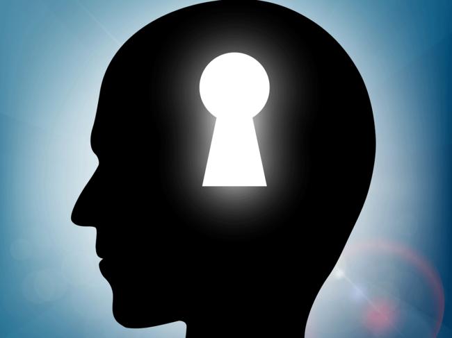 Brain-keyhole-landscape.png