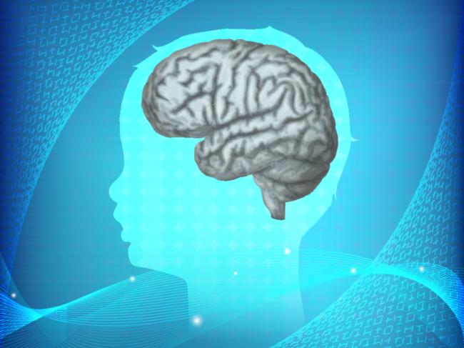 Pediatric brain illustration