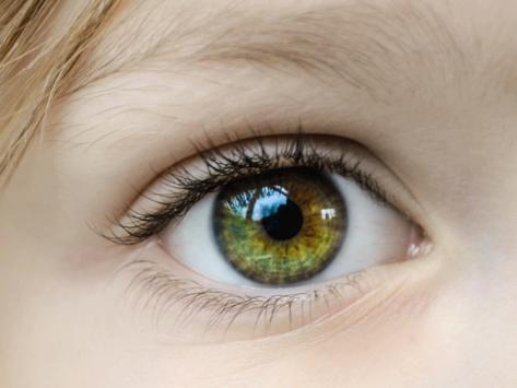 Ocular eyes2