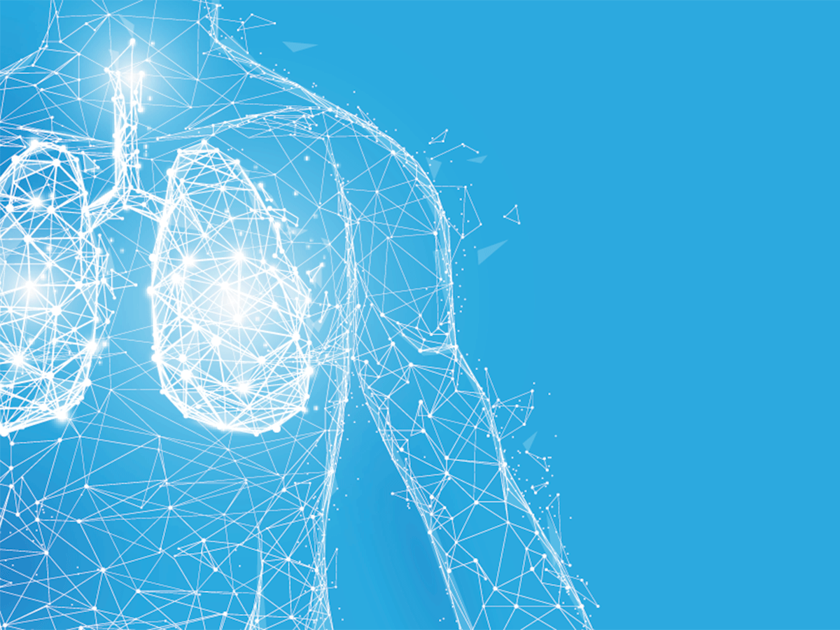 Lungs wireframe illustration