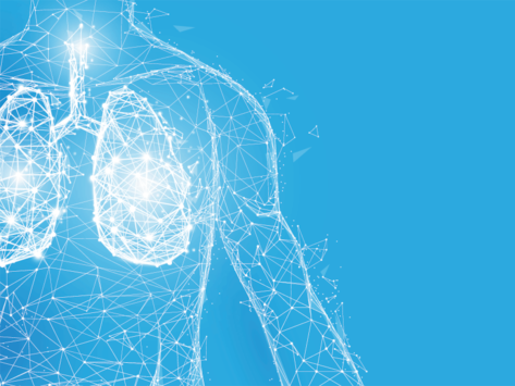 Respiratory-lungs-wireframe